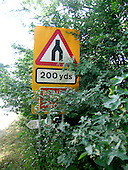 Overgrown vegetation obscuring road safety signs