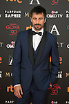 Hugo Silva attends 30th Goya Awards red carpet in Madrid, Spain. February 06, 2016. (ALTERPHOTOS/Victor Blanco)