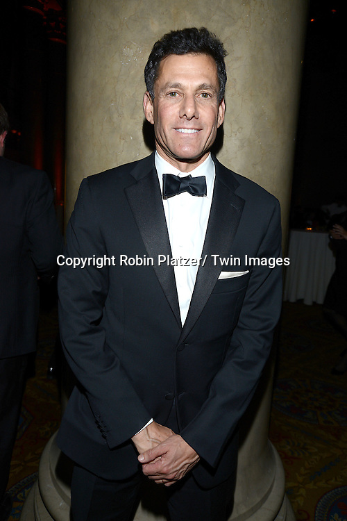 Strauss Zelnick attends the 2013 National Book Awards Dinner and Ceremony on November 20, 2013 at Cipriani Wall Street in New York City.