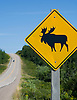 A moose crossing sign on the Cabot Trail on Cape Breton, Nova Scotia. Photo by Kevin J. Miyazaki/Redux