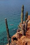 Sea kayakers, Baja, Mexico, Sea of Cortez, Isla Espiritu Santo, Baja Sur, North America, Baja Expeditions, .