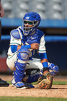Hartford Yard Goats catcher Jan Vazquez (6) during the first game of a doubleheader against the Trenton Thunder on June 1, 2016 at Sen. Thomas J. Dodd Memorial Stadium in Norwich, Connecticut.  Trenton defeated Hartford 4-2.  (Mike Janes/Four Seam Images)
