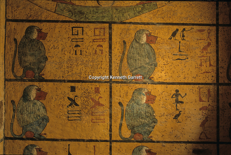 Baboons, Tomb of Tutankhamun, KV52, Valley of the Kings, Thebes, Egypt, New Kingdom, archaeology, wall painting