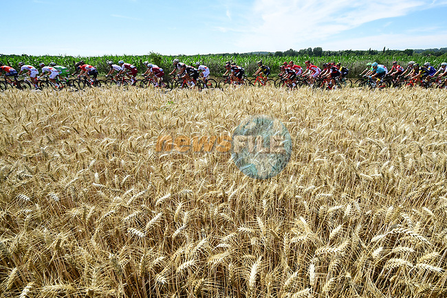 The peloton in action during Stage 5 of the 104th edition of the Tour de France 2017, running 160.5km from Vittel to La Planche des Belles Filles, France. 5th July 2017.<br /> Picture: ASO/Alex Broadway | Cyclefile<br /> <br /> <br /> All photos usage must carry mandatory copyright credit (&copy; Cyclefile | ASO/Alex Broadway)