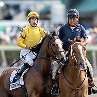 HALLANDALE BEACH, FL - MAR 31:Lull #2 trained by Christophe Clement with Jose Ortiz in the irons prepares to run and win The honey Fox Stakes (G) at Gulfstream Park on March 31, 2018 in Hallandale Beach, Florida. (Photo by Bob Aaron/Eclipse Sportswire/Getty Images)