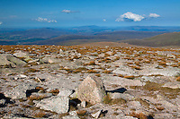 A distant Ben Rinnes and Moray from Cairn Gorm, Cairngorm National Park, Badenoch & Speyside