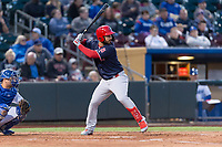 Memphis Redbirds left fielder Rangel Ravelo (44) during a Pacific Coast League game against the Omaha Storm Chasers on April 26, 2019 at Werner Park in Omaha, Nebraska. Memphis defeated Omaha 7-3. (Zachary Lucy/Four Seam Images)