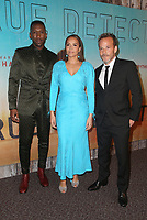 LOS ANGELES, CA - JANUARY 10: Mahershala Ali, Carmen Ejogo and Stephen Dorff at the Los Angeles Premiere of HBO's True Detective Season 3 at the Directors Guild Of America in Los Angeles, California on January 10, 2019.   <br /> CAP/MPI/FS<br /> ©FS/MPI/Capital Pictures