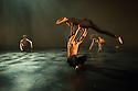 London, UK. 13.01.2015. Salah el Brogy's Company in dress rehearsal of THE RACE, at The Place, where it is part of the Resolution! festival. The dancers are: Salah el Brogy, Nico Migliorati, Dang Hai Dao, Michael Kelland, Jordan Ajadi. Photograph © Jane Hobson.