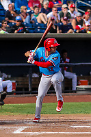 Peoria Chiefs outfielder Matt Fiedler (12) at bat during a Midwest League game against the Quad Cities River Bandits on May 27, 2018 at Modern Woodmen Park in Davenport, Iowa. Quad Cities defeated Peoria 8-3. (Brad Krause/Four Seam Images)