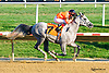 Easter Man winning at Delaware Park on 9/19/15