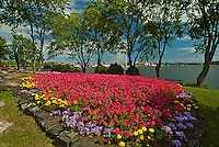 Urban garden by the harbour in Lake of the Woods<br /> Kenora<br /> Ontario<br /> Canada