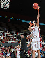 STANFORD, CA - March 24, 2015: Stanford<br /> Cardinal men's basketball team competes against Vanderbilt Commodores in a NIT quarterfinal match at Maples Pavilion in Stanford California. Final score Stanford wins, 78-75.
