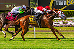 JULY 06, 2019 :  Henley's Joy with Jose Lezcano, wins the $1,000,000 Belmont Derby Invitational Stakes, 1 1/4 mile on turf, at Belmont Park, in Elmont, NY, July 6, 2019.  Sue Kawczynski_ESW_CSM