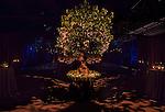 2014 04 26 Cedar Lake Ballet - private party by Frank Alexander