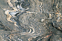 GNEISS<br /> Granite Gneiss, Folded Rock Strata<br /> Orchard Beach, NY