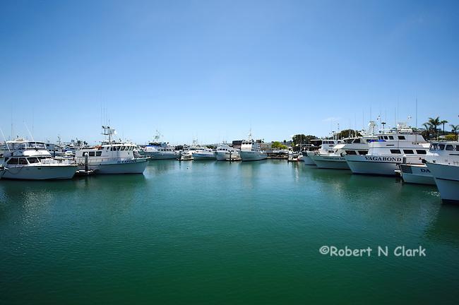 San Diego Sport Fishing