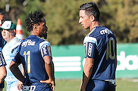 SAO PAULO,SP, 14.08.2015 - FUTEBOL-PALMEIRAS - Ze Roberto e Lucas Barrios durante a treino na Academia de Futebol do Palmeiras, na zona oeste de São Paulo, nesta sexta-feira, 14. (Foto: Douglas Pingituro / Brazil Photo Press)