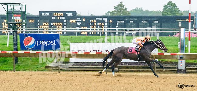 I'm Not Joking winning at Delaware Park on 10/8/16