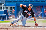 1 March 2017: Miami Marlins infielder Derek Dietrich slides home safely to score Miami's 5th run on a tag-up play during Spring Training action against the Houston Astros at the Ballpark of the Palm Beaches in West Palm Beach, Florida. The Marlins defeated the Astros 9-5 in Grapefruit League play. Mandatory Credit: Ed Wolfstein Photo *** RAW (NEF) Image File Available ***
