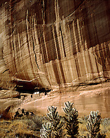 White House Ruins; Canyon de Chelly National Monument, AZ