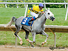 Dancing Misty winning and at Delaware Park on 7/18/13