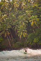 Mirissa Beach, surfer surfing in front of palm trees, South Coast of Sri Lanka, Asia. This is a photo of a surfer surfing in front of palm trees on Mirissa Beach, Sri Lanka, Asia. Mirissa Beach is a popular surfing spot on the South Coast of Sri Lanka.