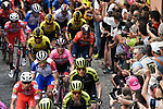 The peloton including Maglia Rosa Valerio Conti (ITA) UAE Team Emirates and Vincenzo Nibali (ITA) Bahrain-Merida during Stage 12 of the 2019 Giro d'Italia, running 158km from Cuneo to Pinerolo, Italy. 23rd May 2019<br /> Picture: Fabio Ferrari/LaPresse | Cyclefile<br /> <br /> All photos usage must carry mandatory copyright credit (© Cyclefile | Fabio Ferrari/LaPresse)