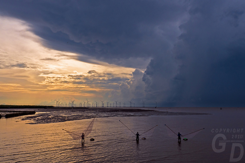 Traditional fisherman,Windfarm and the regeneration of Mangroves at the coast of Bac Lieu, Mekong Delta.
