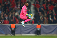 Mike Maignan of Lille OSC during Lille OSC vs Chelsea, UEFA Champions League Football at Stade Pierre-Mauroy on 2nd October 2019
