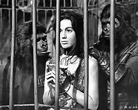 Planet of the Apes (1968) <br /> Linda Harrison<br /> *Filmstill - Editorial Use Only*<br /> CAP/KFS<br /> Image supplied by Capital Pictures