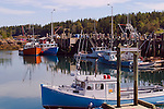 Fishing boats in Head Harbor, Campobello Island, New Brunswick