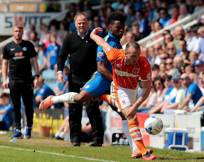 Blackpool's Clark Robertson battles with Peterborough United&rsquo;s Shaquile Coulthirst<br /> <br /> Photographer David Shipman/CameraSport<br /> <br /> Football - The Football League Sky Bet League One - Peterborough United v Blackpool  - Sunday 8th May 2016 - ABAX Stadium - London Road   <br /> <br /> &copy; CameraSport - 43 Linden Ave. Countesthorpe. Leicester. England. LE8 5PG - Tel: +44 (0) 116 277 4147 - admin@camerasport.com - www.camerasport.com