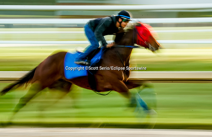 January 24, 2020: A horse gallops as horses prepare for the Pegasus World Cup Invitational at Gulfstream Park Race Track in Hallandale Beach, Florida. Scott Serio/Eclipse Sportswire/CSM