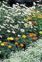 HS47-014c  Flower Garden