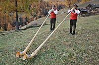 Father and son Alp Horn players and autumn Larch trees, Zermatt, Switzerland