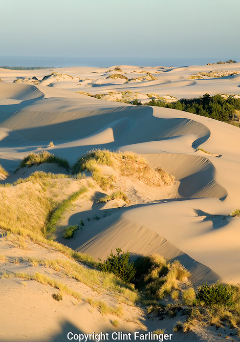 Umpqua Dunes, Oregon Dunes National Recreation Area, Oregon