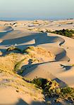 Umpqua Dunes, Oregon Dunes National Recreation Area, Oregon