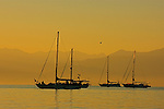 The anchored sail boats are awakened by a beautiful dawn in the Bay of Banderas Mexico.