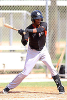 Miami Marlins infielder Garvis Lara #88 at bat during an Instructional League intramural game on September 30, 2014 at Roger Dean Complex in Jupiter, Florida.  (Stacy Jo Grant/Four Seam Images)