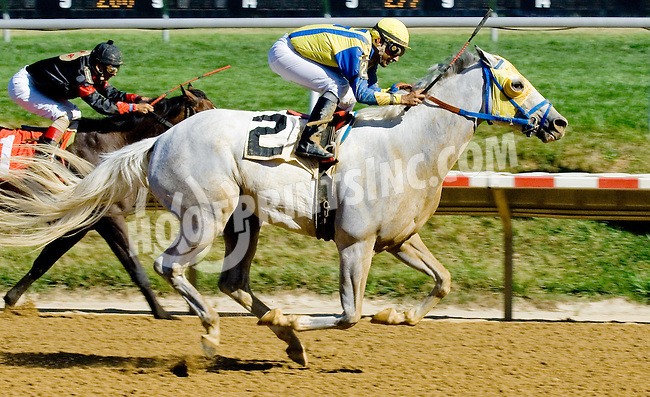 Ideologist at Delaware Park on 7/25/12