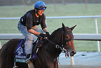 10-29-12 Breeders Cup Workouts