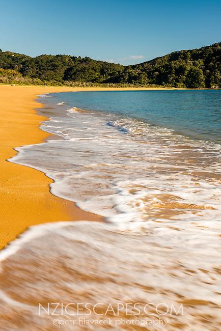 Saturated orange colours of Totaranui beach after sunrise on Abel Tasman Coast Track, Abel Tasman National Park, Nelson Region, South Island, New Zealand