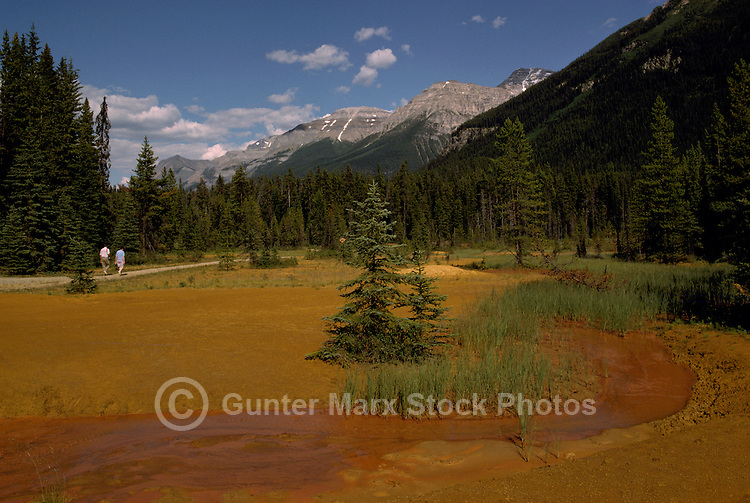 Kootenay National Park, Canadian Rockies, BC, British Columbia, Canada - The Paint Pots (Ochre Beds), Summer