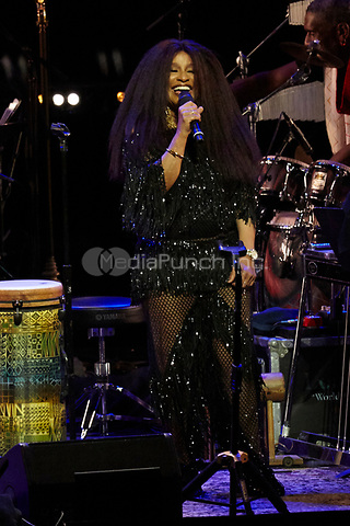 Los Angeles, CA - NOV 07:  Chaka Khan performs at 'Joni 75: A Birthday Celebration Live At The Dorothy Chandler Pavilion' on November 07 2018 in Los Angeles CA. Credit: CraSH/imageSPACE/MediaPunch