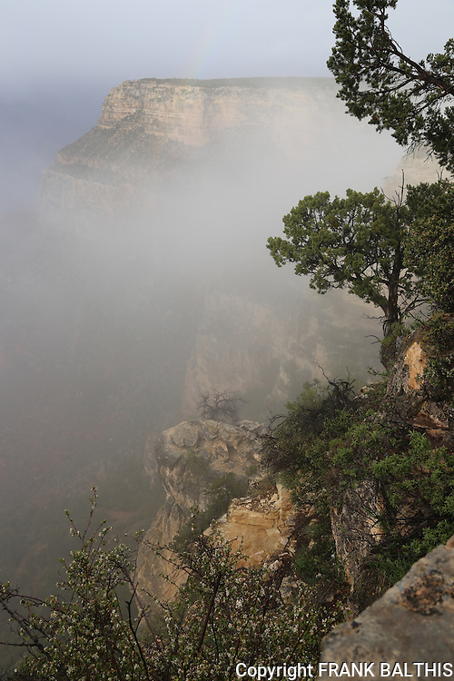 Grand Canyon South Rim in May storm