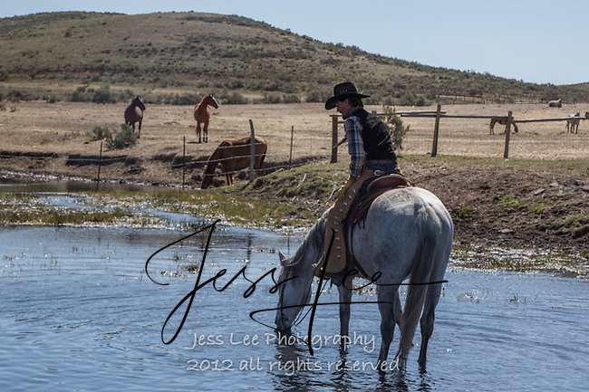 Happy hour Cowboys working and playing. Cowboy Cowboy Photo Cowboy, Cowboy and Cowgirl photographs of western ranches working with horses and cattle by western cowboy photographer Jess Lee. Photographing ranches big and small in Wyoming,Montana,Idaho,Oregon,Colorado,Nevada,Arizona,Utah,New Mexico.
