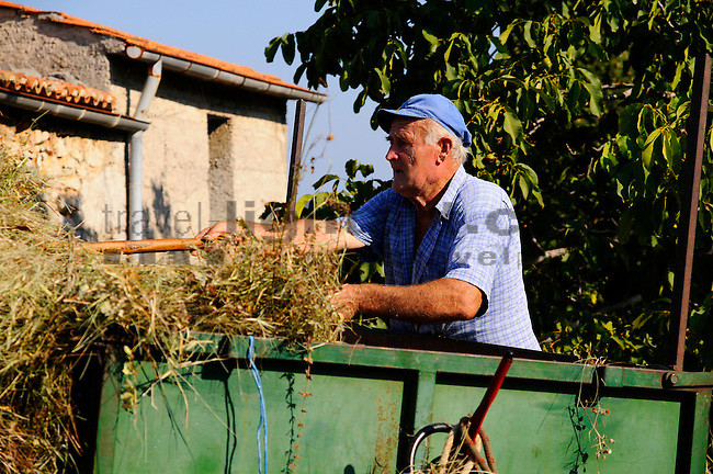 Bauer in Vrh. Farmer in Vrh. Krk Island, Dalmatia, Croatia. Insel Krk, Dalmatien, Kroatien. Krk is a Croatian island in the northern Adriatic Sea, located near Rijeka in the Bay of Kvarner and part of the Primorje-Gorski Kotar county. Krk ist mit 405,22 qkm nach Cres die zweitgroesste Insel in der Adria. Sie gehoert zu Kroatien und liegt in der Kvarner-Bucht suedoestlich von Rijeka.