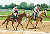 outriders at Delaware Park on 6/22/17