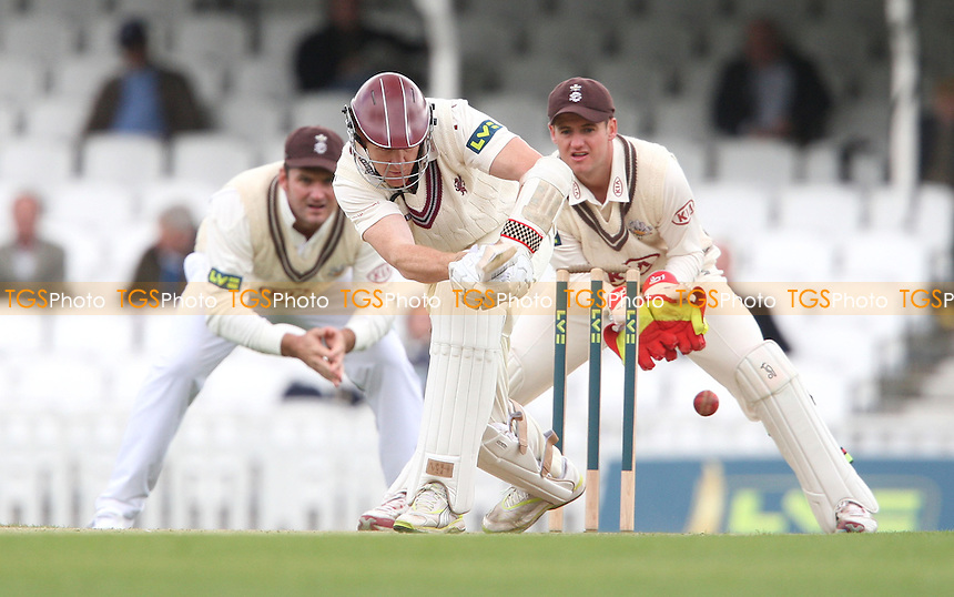 Steven Kirby of Somerset in batting action - Surrey CCC vs Somerset CCC, LV County Championship Division 1 at The Kia Oval, Kennington - 18/04/13 - MANDATORY CREDIT: Rob Newell/TGSPHOTO - Self billing applies where appropriate - 0845 094 6026 - contact@tgsphoto.co.uk - NO UNPAID USE.